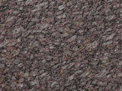 Zeta Brown brown Granite Brazil